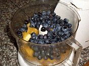 Fruit in food processor